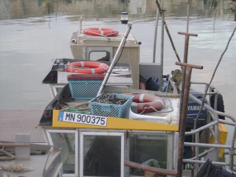 Barge , Chaland , Plate , Ponton et Lasse ostréicole. Dsc06852