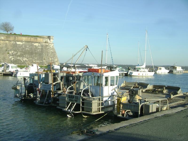 Barge , Chaland , Plate , Ponton et Lasse ostréicole. Dsc06857