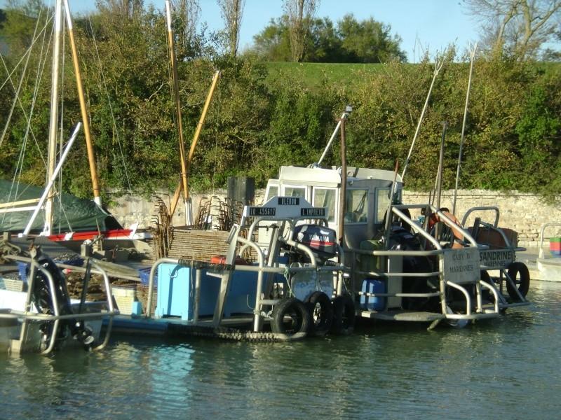 Barge , Chaland , Plate , Ponton et Lasse ostréicole. Dsc06863