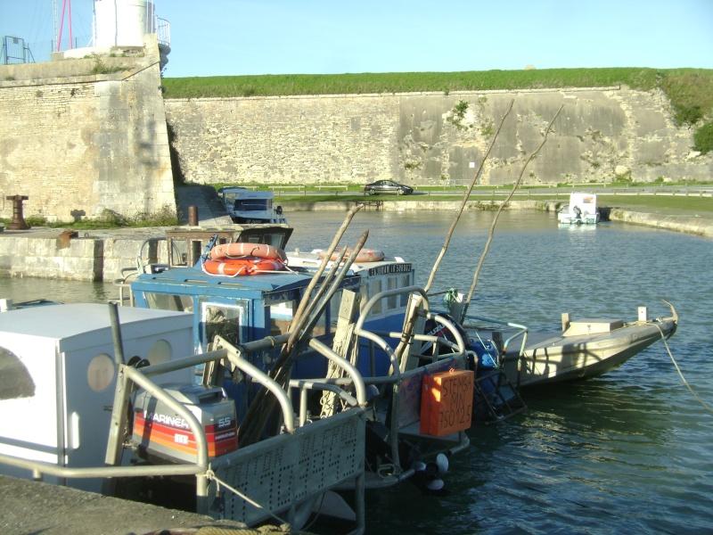 Barge , Chaland , Plate , Ponton et Lasse ostréicole. Dsc06866