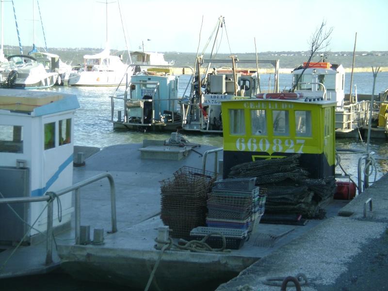 Barge , Chaland , Plate , Ponton et Lasse ostréicole. Dsc06867