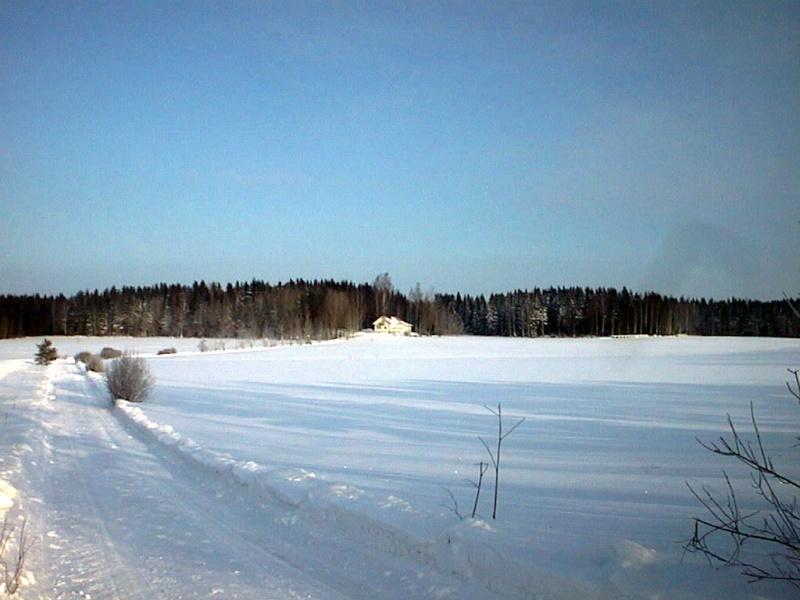 Finlandia, Finlandia, Finlandia! Aut_5312