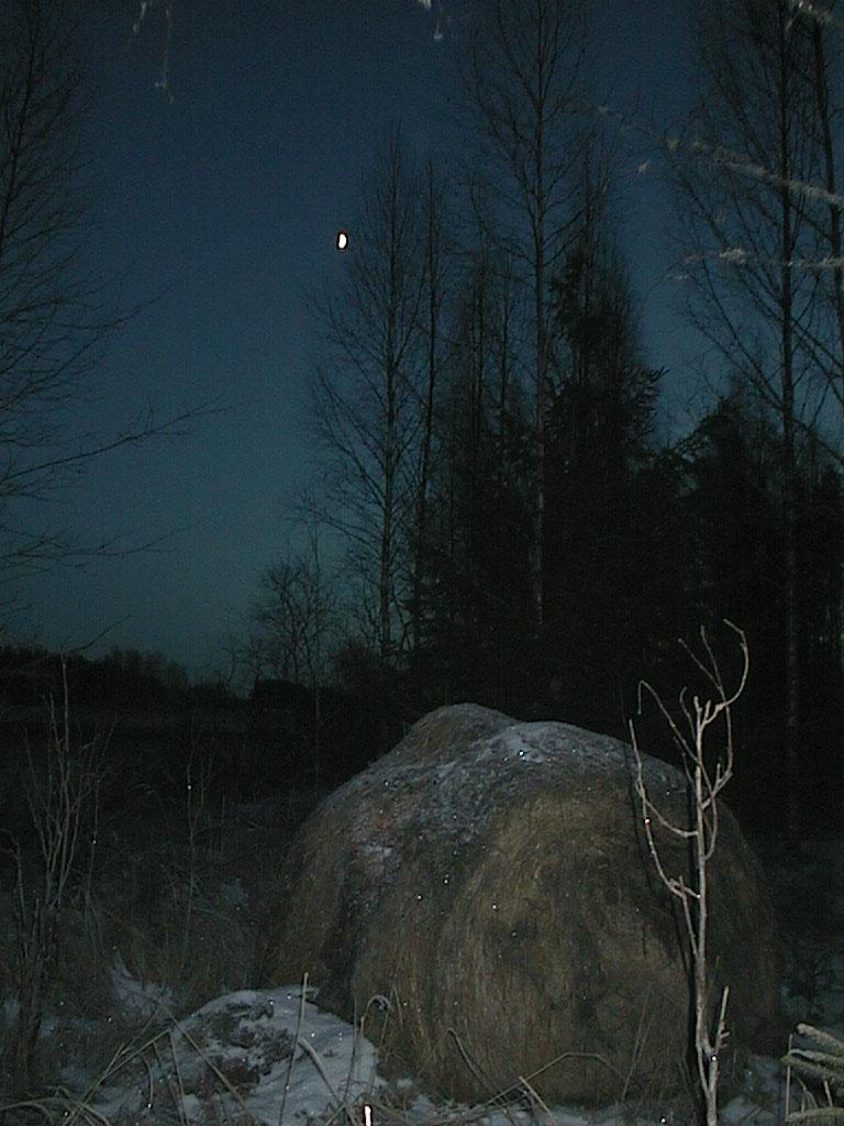 Finlandia, Finlandia, Finlandia! Finxma10