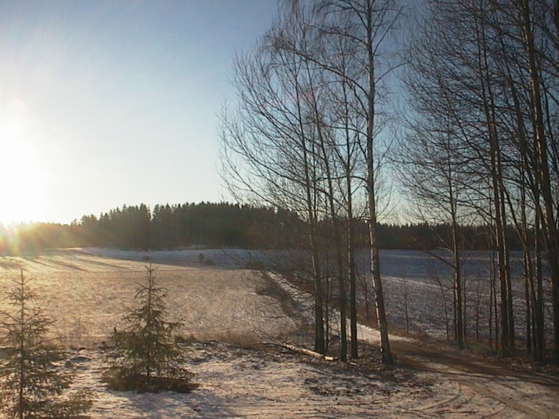 Finlandia, Finlandia, Finlandia! Finxma11
