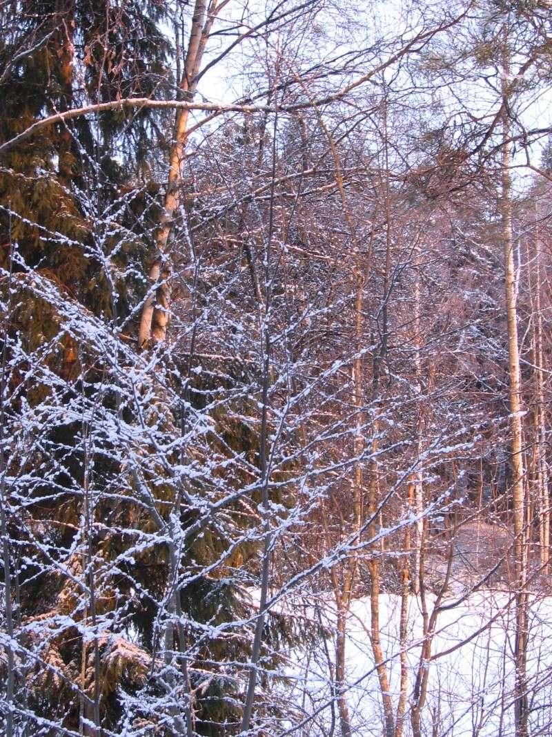 Finlandia, Finlandia, Finlandia! - Pagina 2 Img_0014