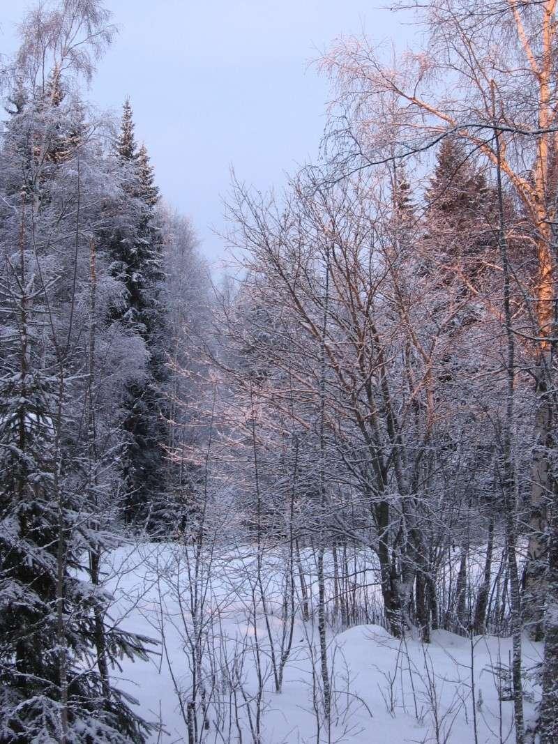 Finlandia, Finlandia, Finlandia! - Pagina 2 Img_0015