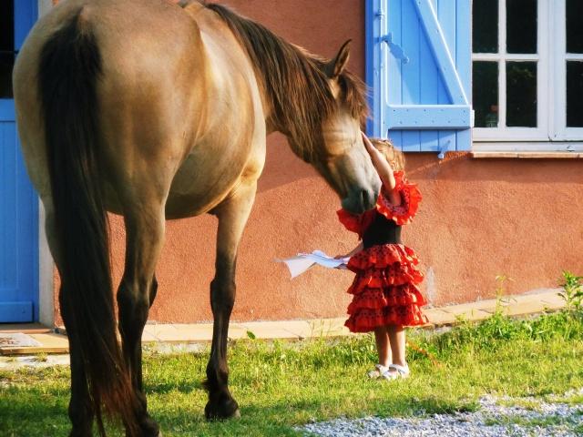 Concours Photo Juillet : Quand Cheval rime avec Poésie... P1150410