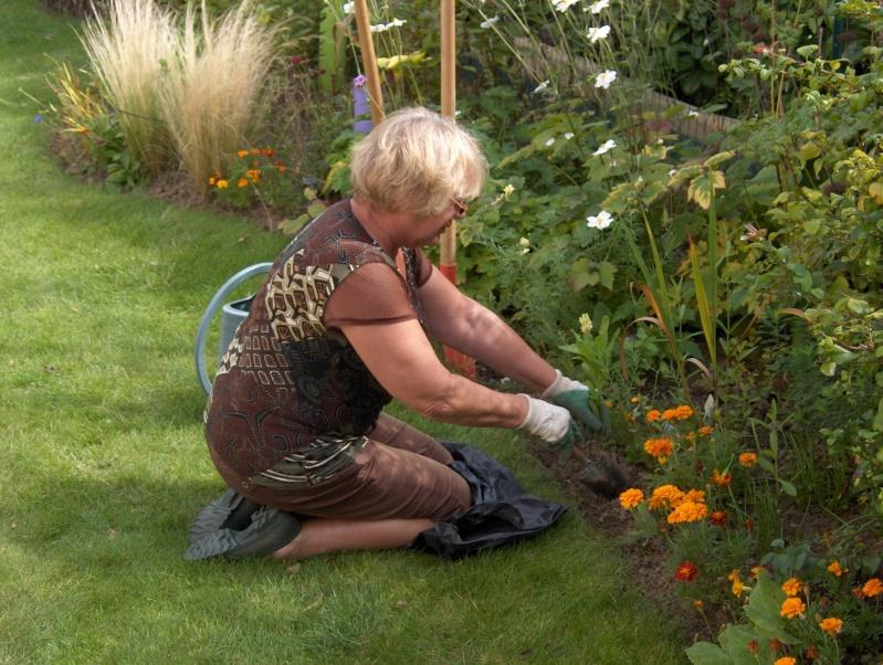 travaux au jardin - Page 5 Hpim3712