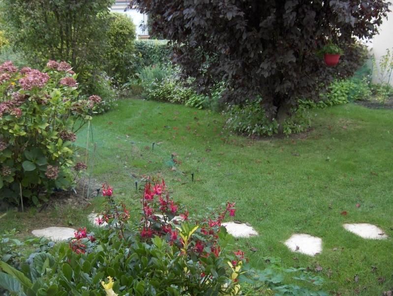 Les fleurs de mon jardin Hpim3734