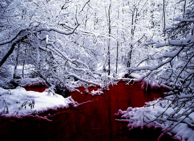 Kira Red bumst mit einem blinden im Wald