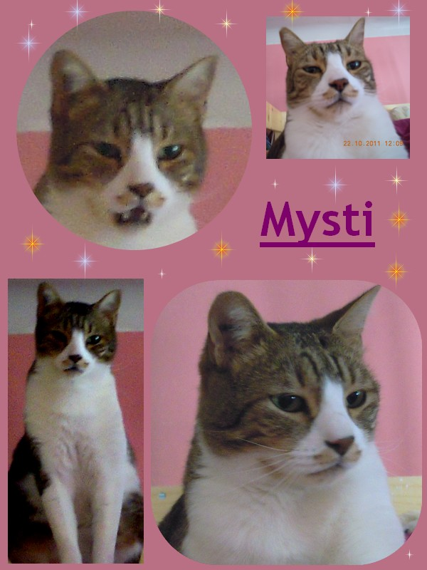 Tigrou et Mysti Mysti12