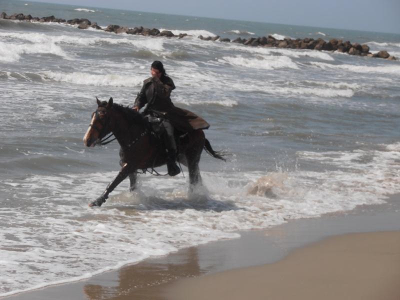 "Concours : ""cheval au galop"" GAGNANTE : TItâne - Page 2 P4300010"