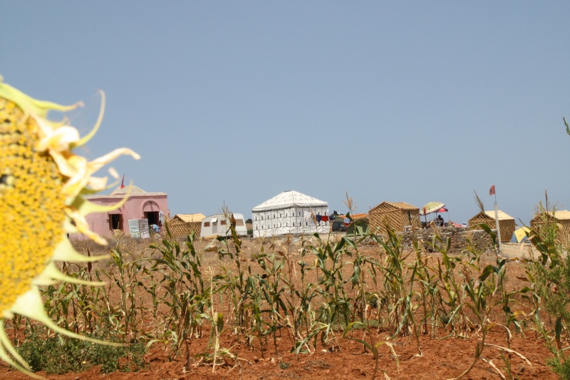 Des news du Camping Amis de Cala Iris (Région Al Hoceima) Img_2510