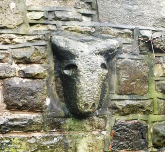 Celtic Stone Heads in Bacup, Lancashire ??? Animal10