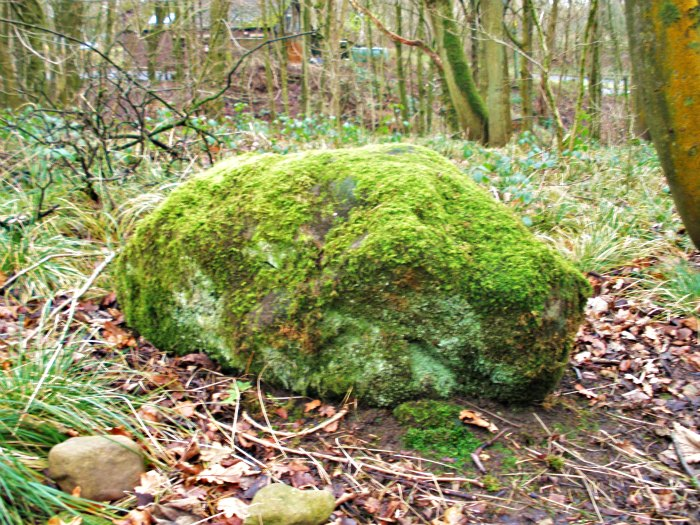 SPRING WOODS STONE near Whalley, Lancashire Spring10
