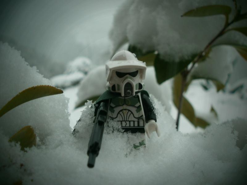 [L'hiver de la minifig] Les photos P1310010