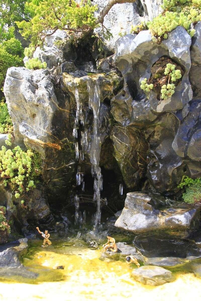 Offline with Mr. Robert Stenven in my Garden (lnvinh - VietNam) 5c10