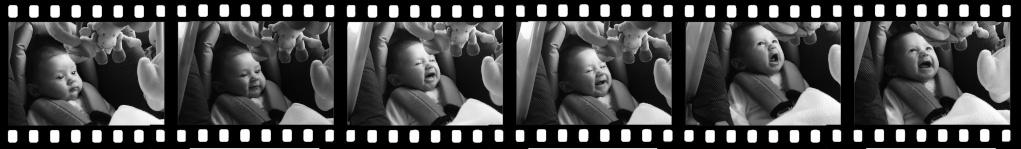Leeloo : 38 semaines d'espoir et une vie de bonheur - Page 3 P1110414