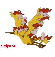 Quel est votre Pokémon préféré? Sulfur10