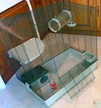 vends cage TOM équipée, très bon état ! Cage_p10