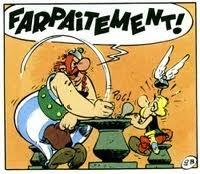 La p'tite bleue des charentes - Page 9 Obelix12
