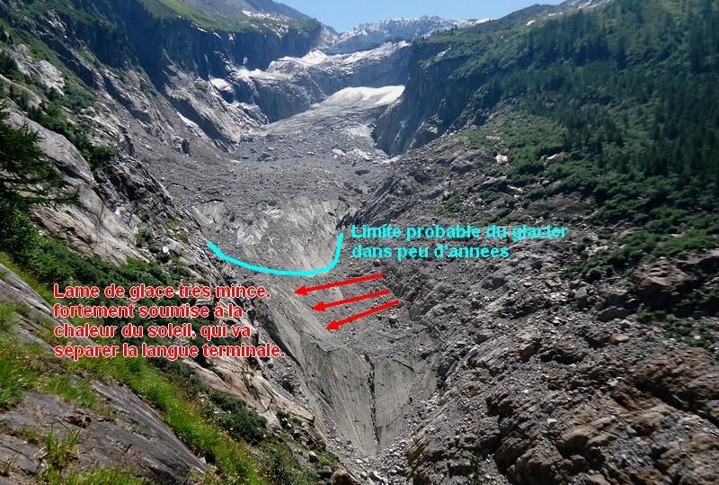 Le glacier d'Argentière - Page 2 Dsc00528