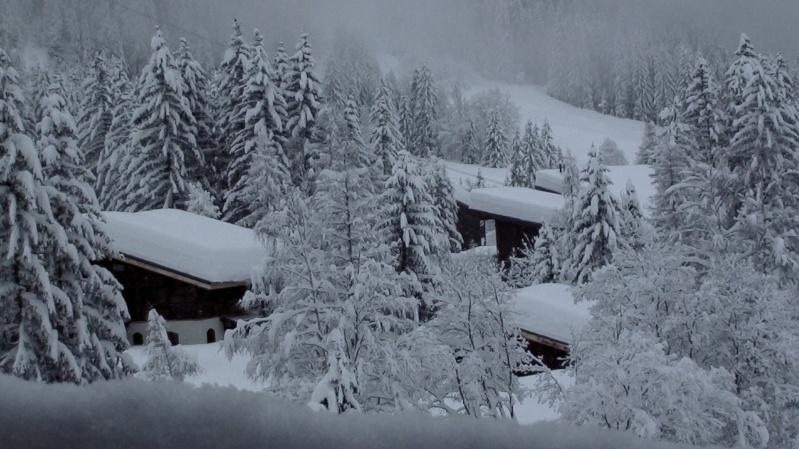 Observations neige dans le massif et la vallée - Page 4 Dsc00818