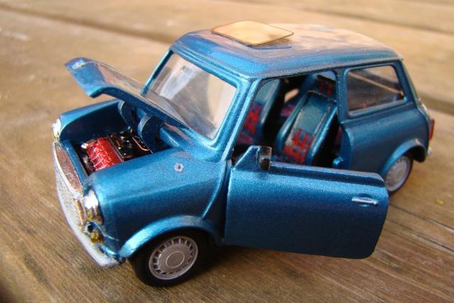 My mini-Mini!! Dsc07410