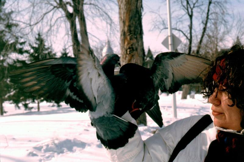 Un après-midi d'hiver au parc Mg_17613
