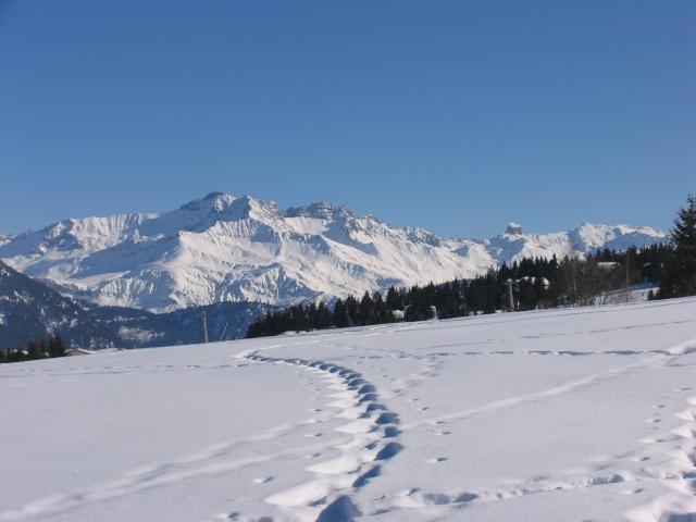 Vacances à la neige Vacanc12