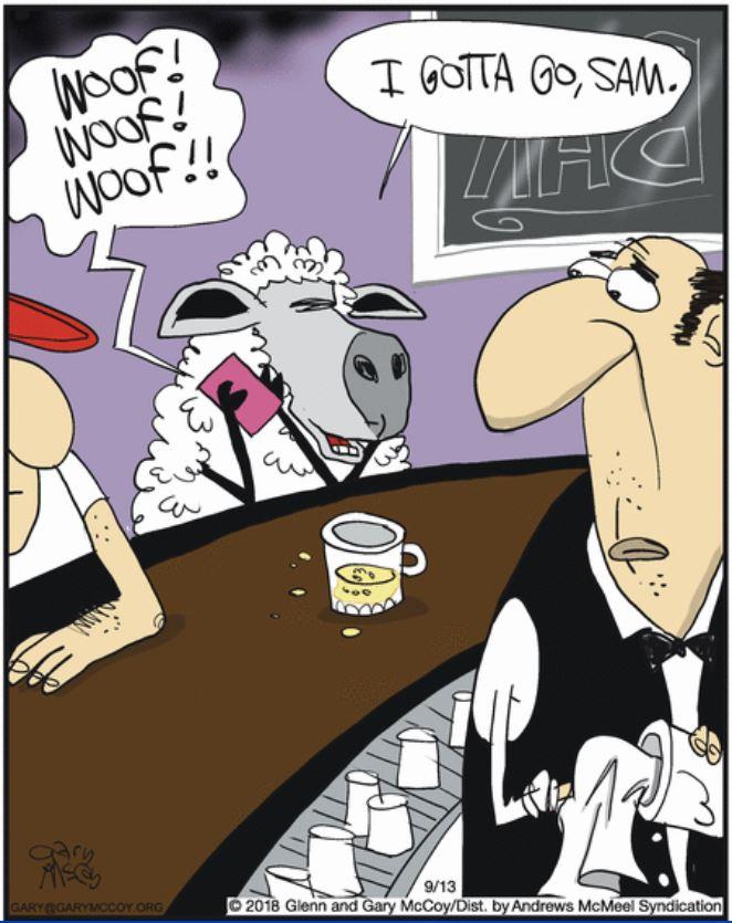 Dessins et Photos humoristiques - Page 31 Berger10