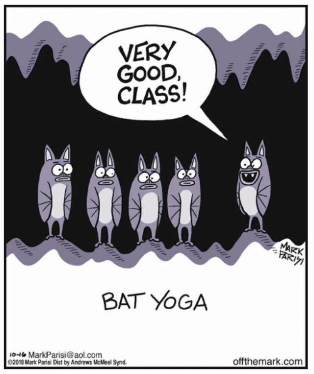 Dessins et Photos humoristiques - Page 32 Yogaaa10