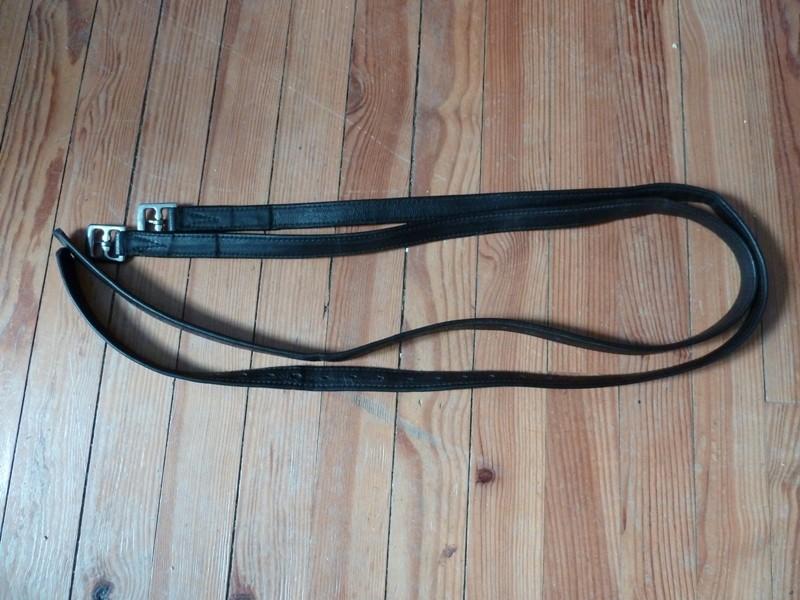 Etrivières Noires  P1020710
