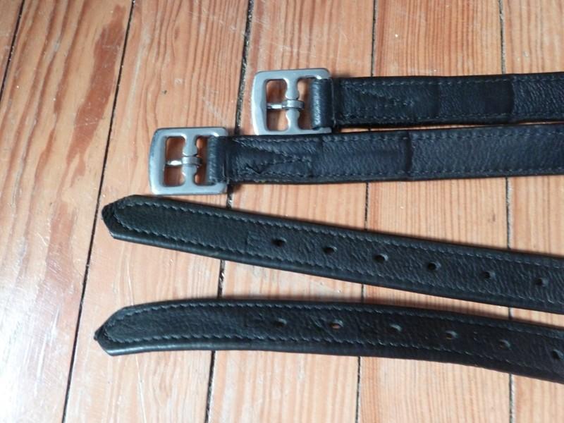 Etrivières Noires  P1020711
