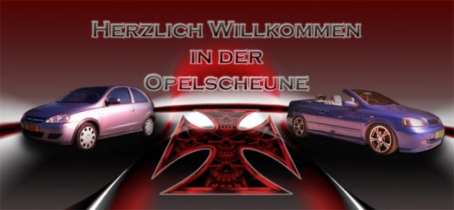Hallöle ihr Opel-Verrückten Willko15
