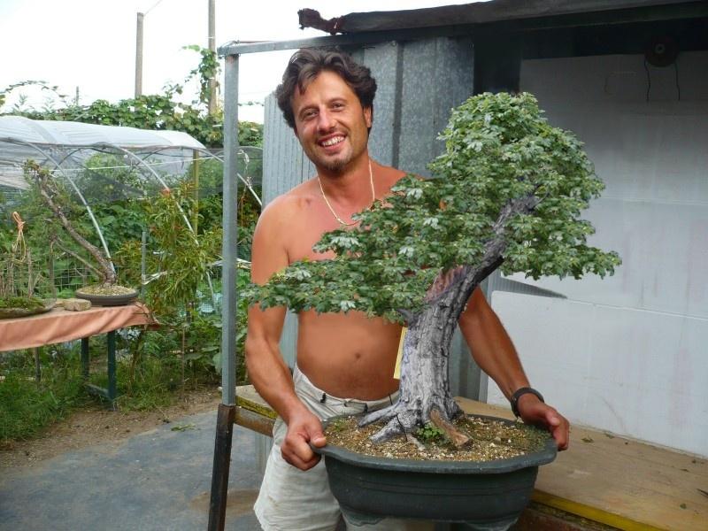 Un biancospino che diventa bonsai...... - Pagina 4 Tony11