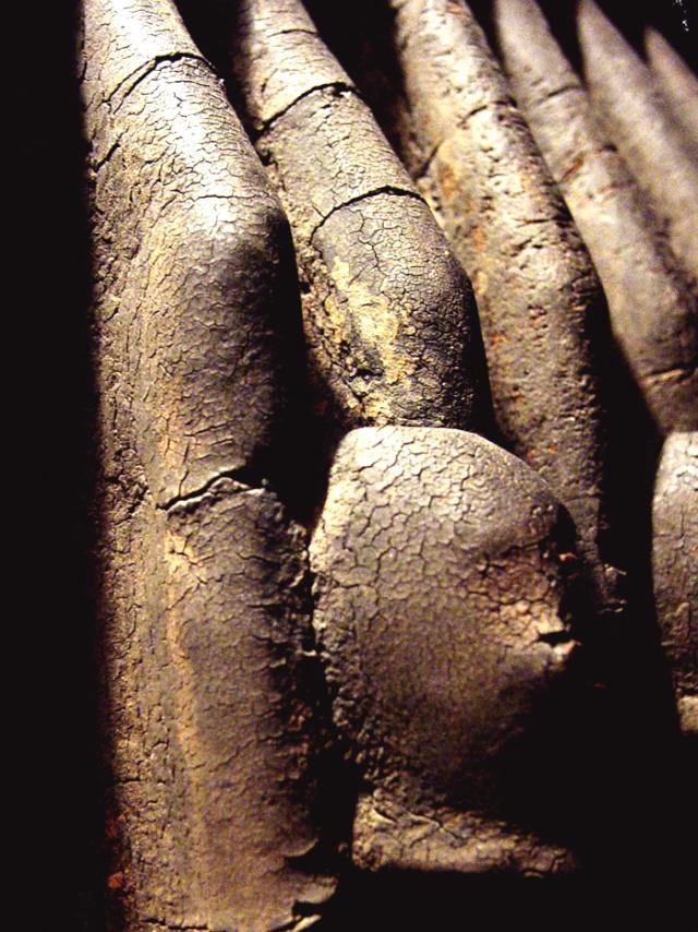 Dogon people, Ritual Panel, Tintam sub-style, Mali Testa_15