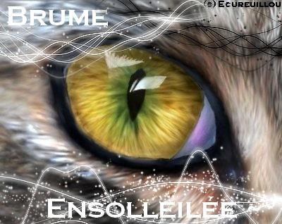 Cadeaux pour Ensolleillou ~○ ! Brume_10