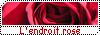 Lendroit rose