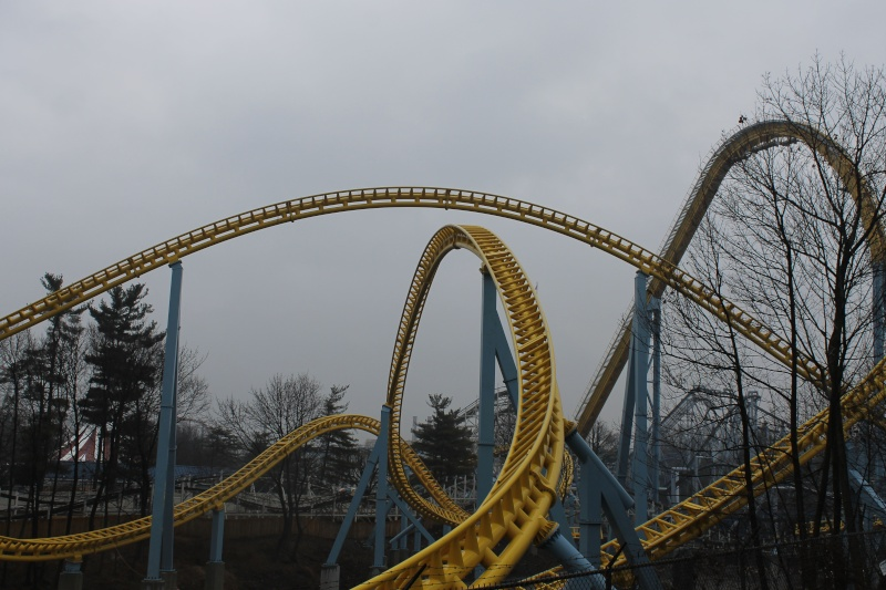 Skyrush Official Discussion Thread - Page 7 Img_0517