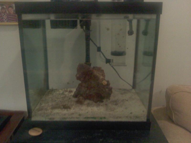 FS: 27 gallon and koralia evo's 12201111