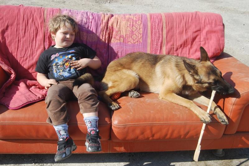 La vie des chiens au sein de l'association, c'est aussi ça... Dsc_0356