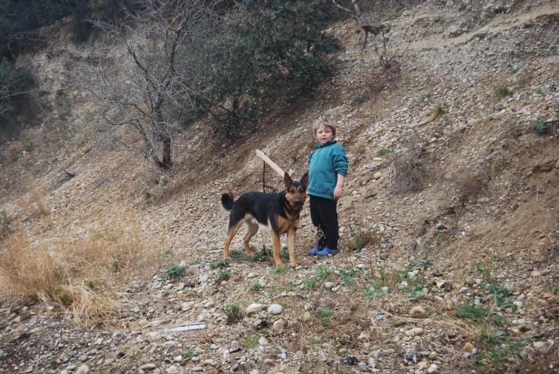 La vie des chiens au sein de l'association, c'est aussi ça... Dsc_0367