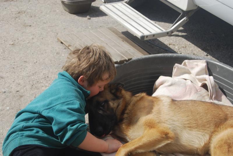La vie des chiens au sein de l'association, c'est aussi ça... Dsc_0376