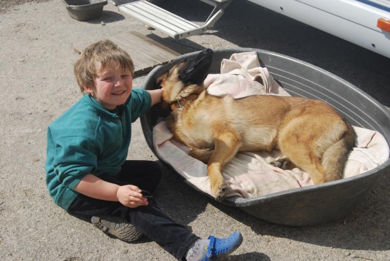 La vie des chiens au sein de l'association, c'est aussi ça... Dsc_0377