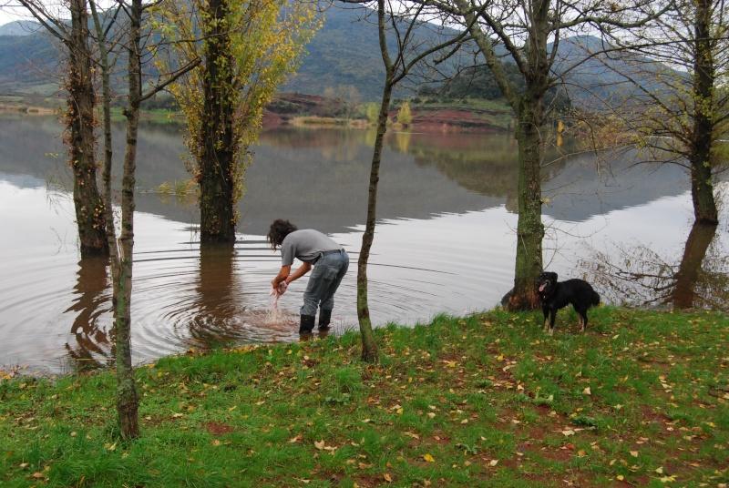 La vie des chiens au sein de l'association, c'est aussi ça... Dsc_0438