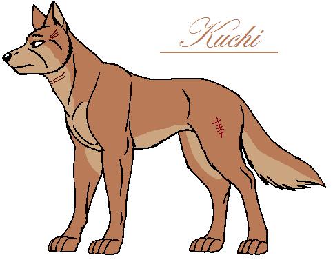 Kuchin esittely Kushi10