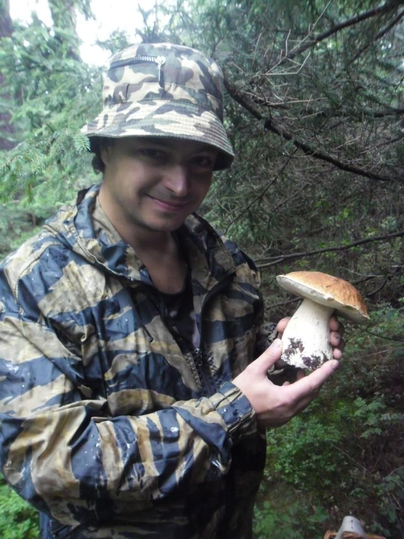 О грибах (что, где, когда?) Sam_5810