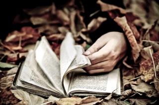 """Avatars """"Un livre à la main"""" The_re11"""