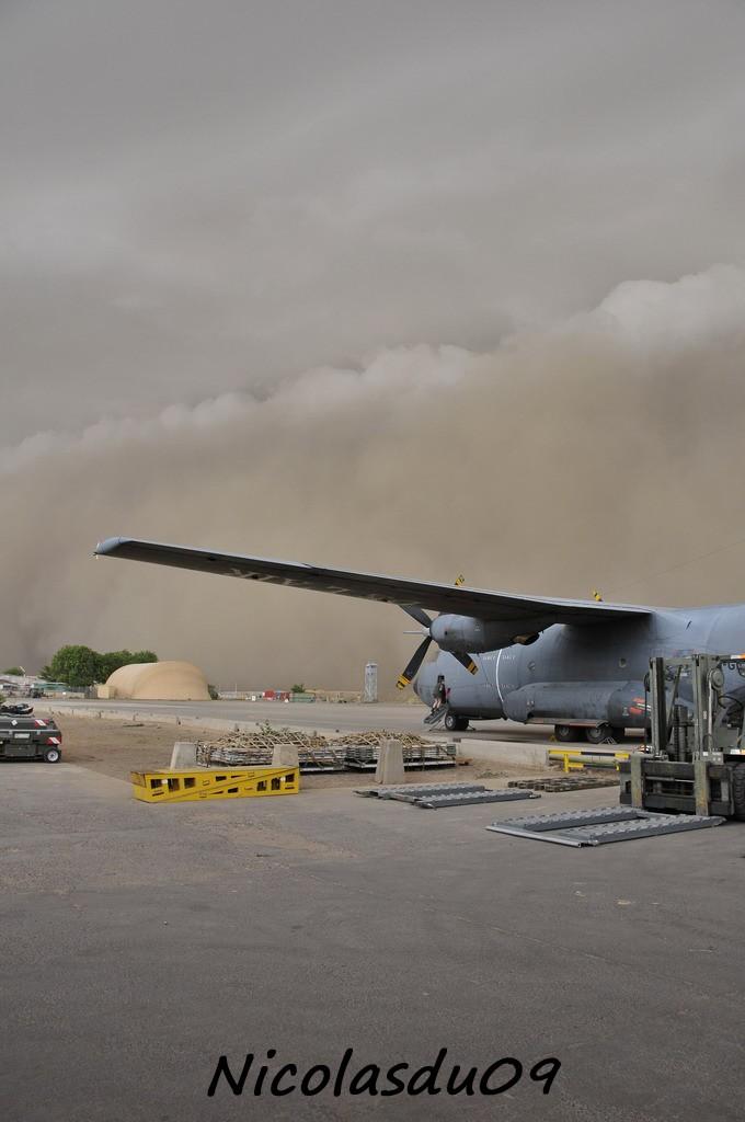 Déluge du désert au Tchad... 2010_110